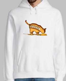 Totoro cat bus IRL