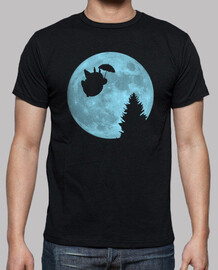 Totoro flying under the moon