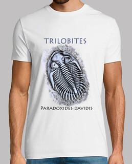 trilobites_00