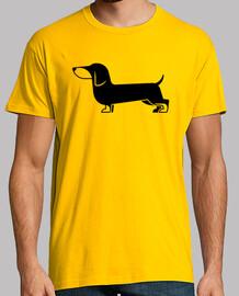 tsp dachshund