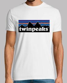 twin peaks patagonia