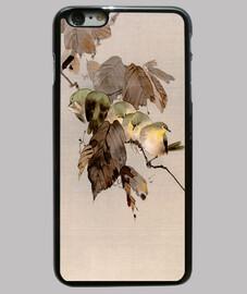 uccelli su un ramo