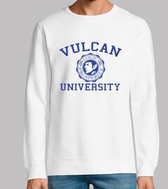 université vulcan