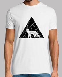 uomo - triangolo di volpe