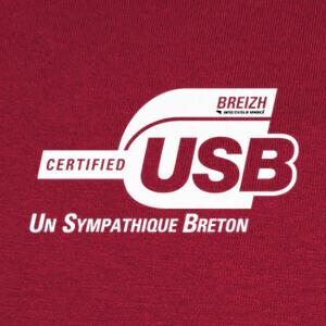 T-shirt usb (un bretón amistoso)