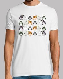 Varios Totoro rappport