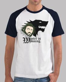 vendita !!! t-shirt unisex - winter is coming
