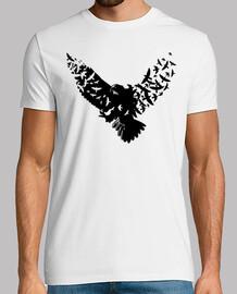vögel aguila
