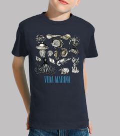 Vida Marina / Animales Marinos