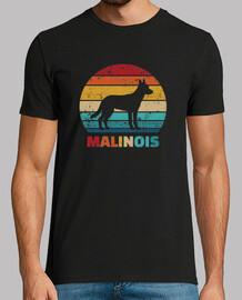 vintage malinois