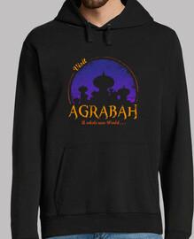 Visit Agrabah