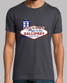 Viva Gallifrey