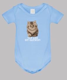 vous êtes mon cataire! bébé bleu.