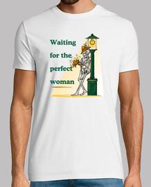 Waiting for the Perfect Woman (En Attente de la Femme Parfaite)