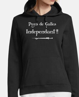 wales kaamelott indipendente
