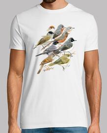 warblers ragazzo bianco