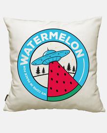 We come for watermelon