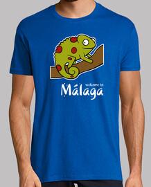Welcome to Malaga 2