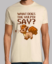 What does the vulpix say?