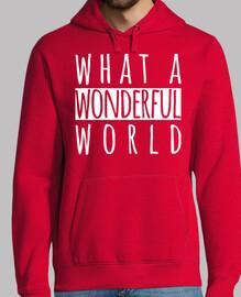 what un meraviglioso world