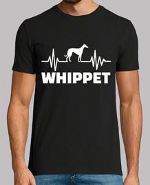 Whippet heartbeat