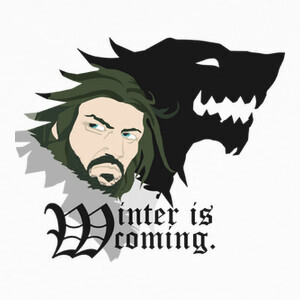 Tee-shirts Winter is Coming