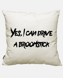 Yes, I can drive a Broomstick