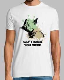 Yoda sabe que eres Gay