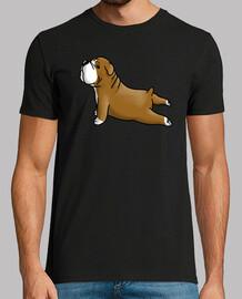 yoga der englischen bulldogge