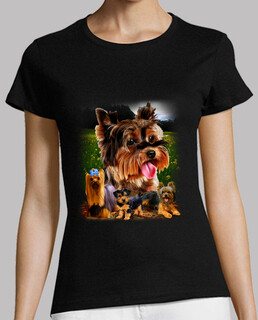 yorkshire terrier model
