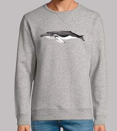 Yubarta ballena jorobada (Megaptera nov