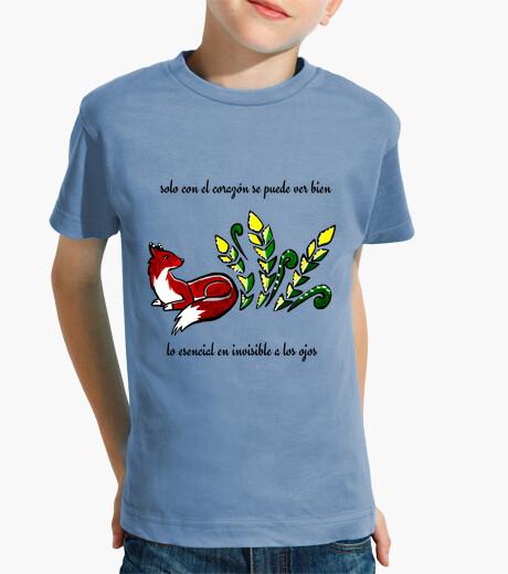Ropa infantil Zorrito. Camiseta niño.