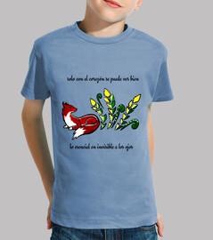 Zorrito. Camiseta niño.