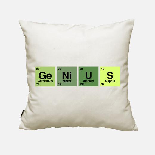 Genius cushion cover